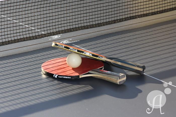 LLoguer taules ping pong