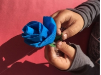 Taller de roses
